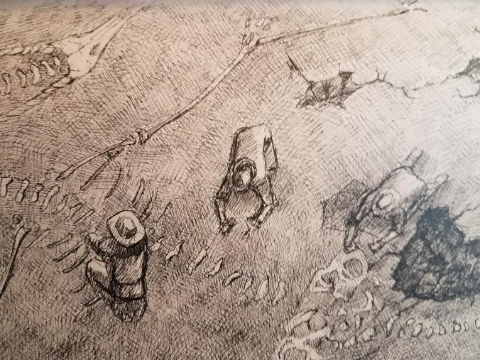 Dragon Archeologists