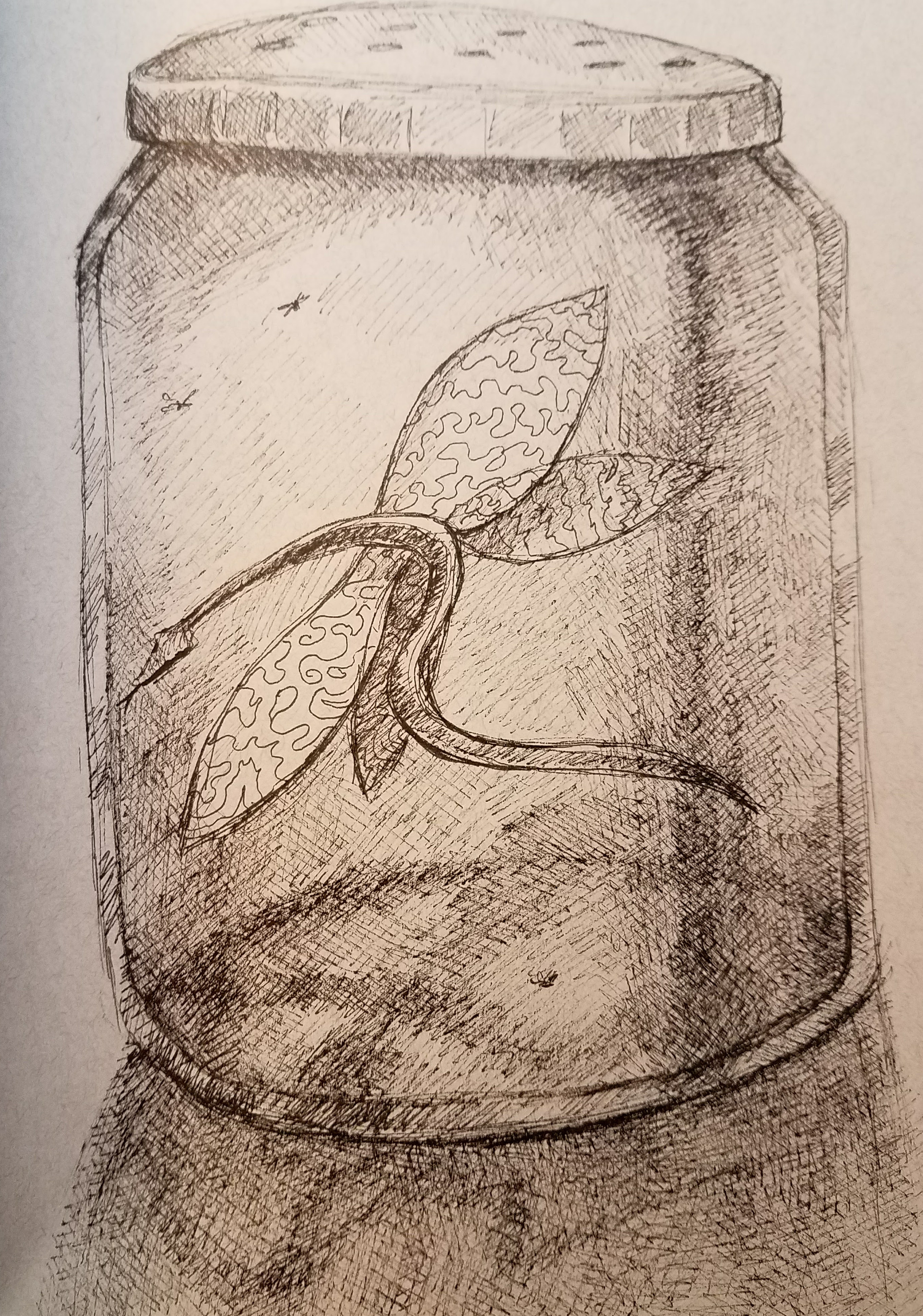 dragon in jar